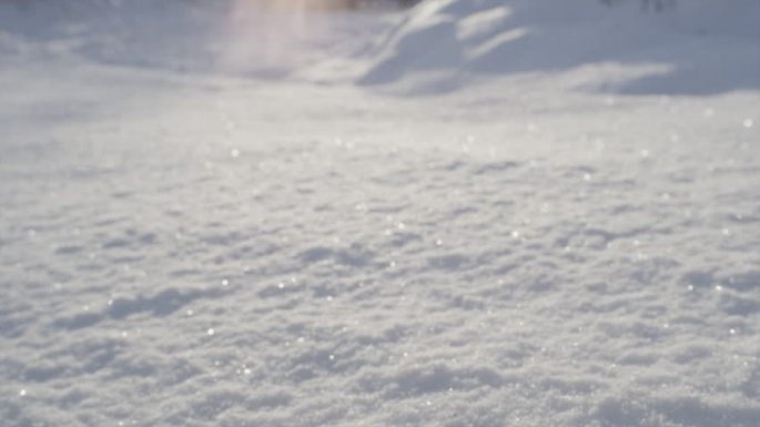 sunlight-on-snow
